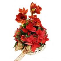 Aranjament cu poinsettia si amaryllis - Merry Christmas Roflora
