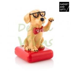 Câine Solar cu Mișcare